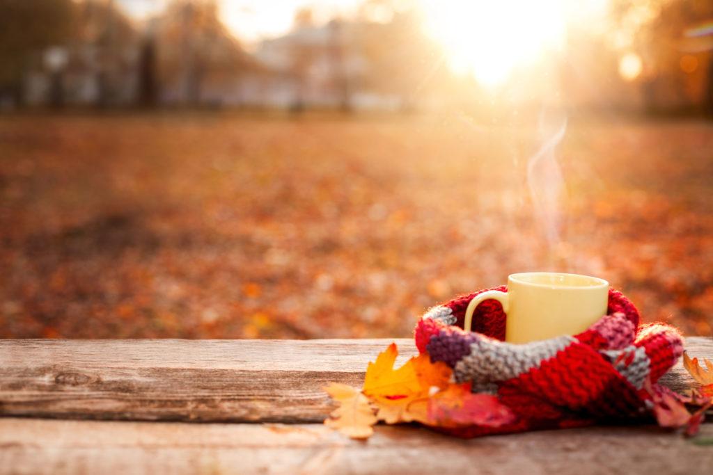 Owinięty szalikiem kubek z gorącym napojem, na tle jesiennego krajobrazu