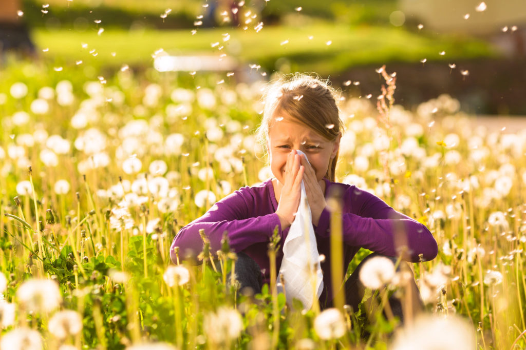 Dziewczynka siedzi na polanie wśród dmuchawcy i trzyma chusteczkę przy nosie